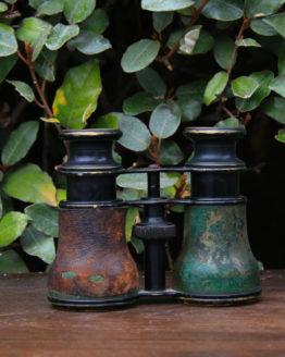 Location décoration jumelles vintage
