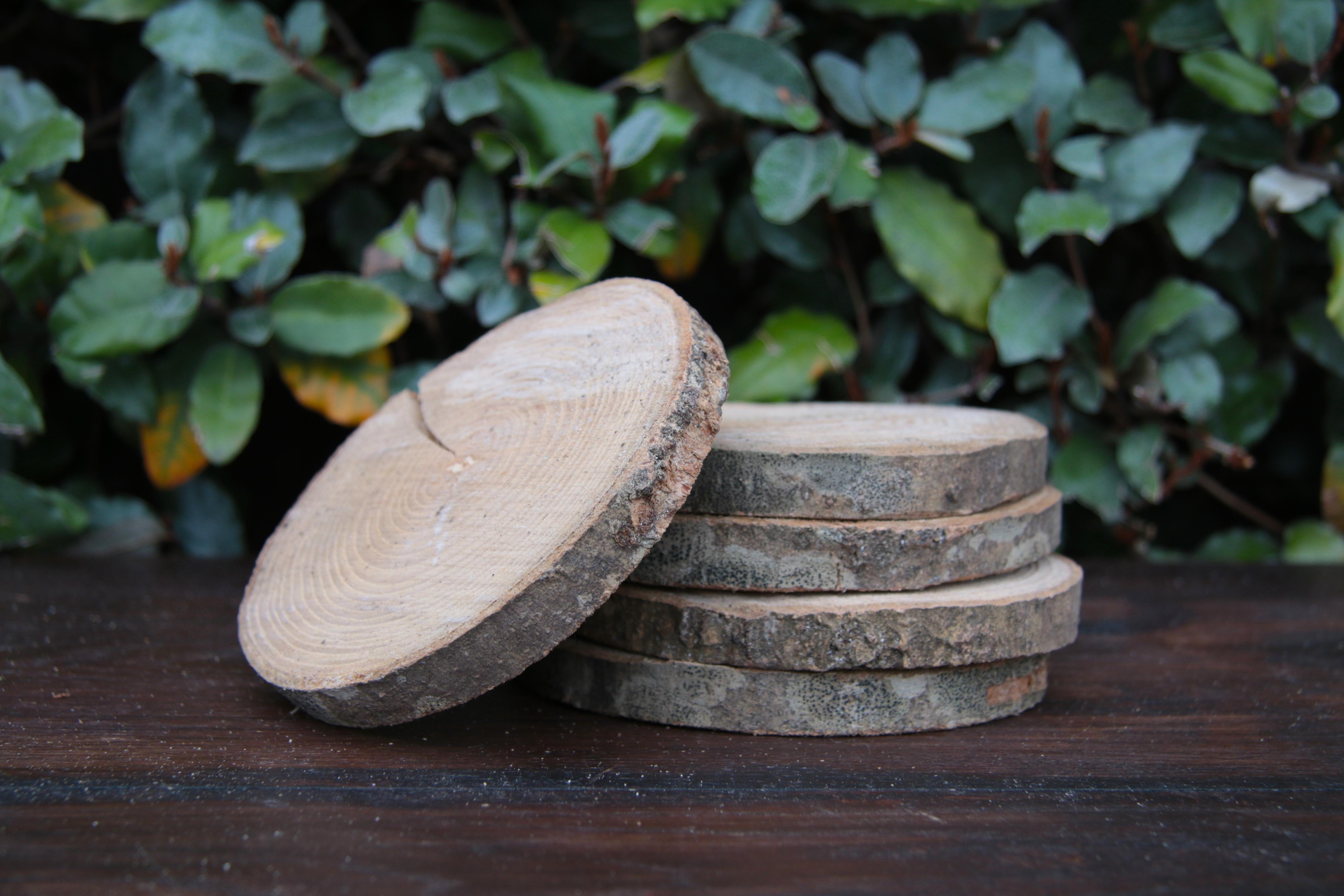 les d conneuses mon pr f r c 39 est le rondelet rondin de bois. Black Bedroom Furniture Sets. Home Design Ideas