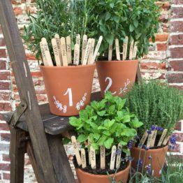 Location décoration pot terre cuite